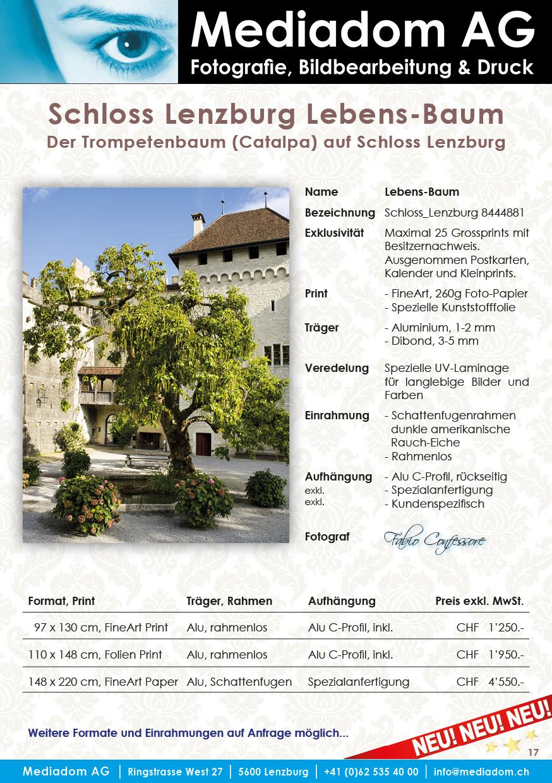 Bilderkatalog_Souvenir_Lenzburg_V08-A5+Inserat17